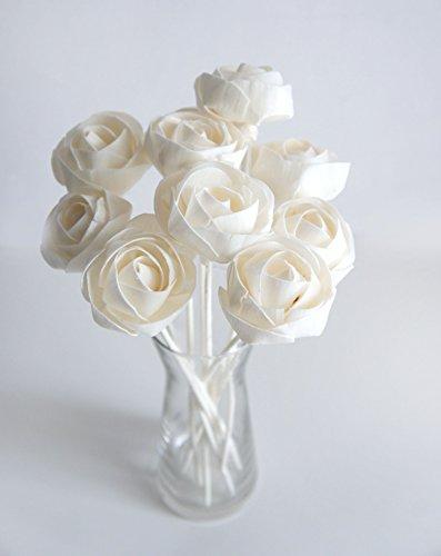 Exotic Plawanature Set mit 10 weißen Sola-Holzblumen mit Schilfrohr-Diffusor für Zuhause Duft.