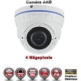 Dôme AHD Anti-vandal 4 MegaPixels Capteur 1/3' OV IR IR 35m étanche réf: EC-AHDD30B4MP - caméra vidéo surveillance - vidéo surveillance