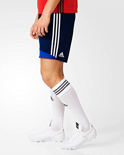 adidas Herren Regista 16 Shorts Dark Blue/White/Bold Blue