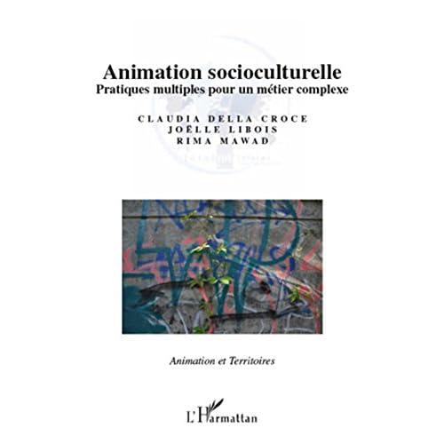 Animation socioculturelle: Pratiques multiples pour un métier complexe (Animation et Territoires)