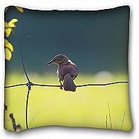 Decorativo Quadrato Throw Pillow Case animali Uccello Fence Natura 18x 18in due lati - Fence Cleaner