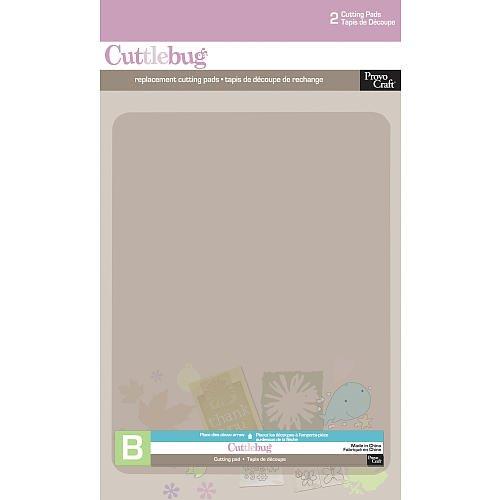Cuttlebug 2 (Cuttlebug Cutting Plate B-6