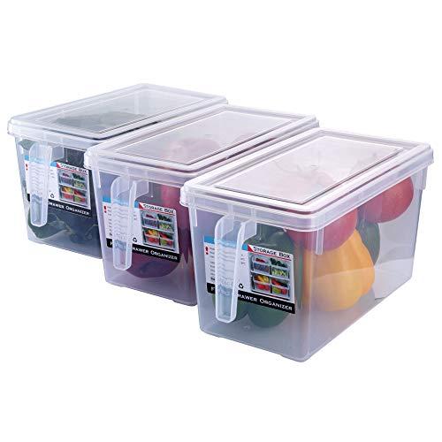HapiLeap Kühlschrank Organizer Küche Frischhaltedose mit Deckel und Griff (3Pcs)