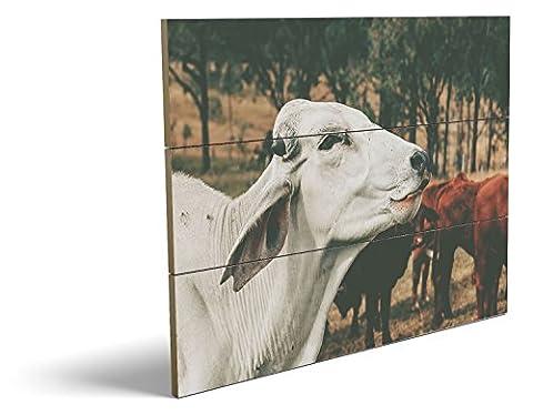 Die glückliche Kuh, qualitatives MDF-Holzbild im Drei-Brett-Design mit hochwertigem und ökologischem UV-Druck Format: 80x60cm, hervorragend als Wanddekoration für Ihr Büro oder Zimmer, ein Hingucker, kein Leinwand-Bild oder (Feld 48 Tor)