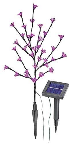 esotec Solar LED Blütenstrauch, rosa 102104