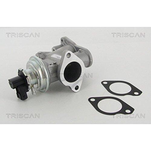 TRISCAN 8813 24203 AGR-Ventile