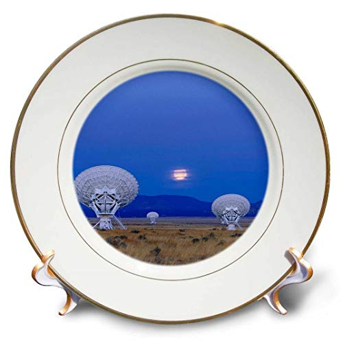 3dRose CP 92545_ 1Nm, San Agustín, 27sehr große Array antennas-us32bja0061-jaynes Gallery-Porcelain, 20,3cm Antenne-teller