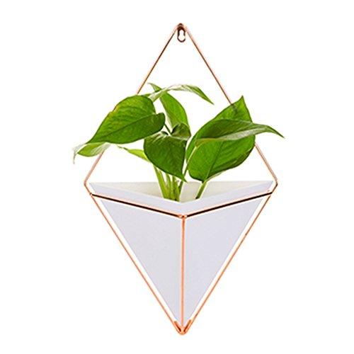 iBaste Damen Wandbehang Vase geometrische Wand Dekor Container Pflanzen Halter - ideal für Sukkulenten, Air Plant, Mini Kaktus, Faux Pflanzen (weiß, L) (Leichte Indoor-pflanzer)