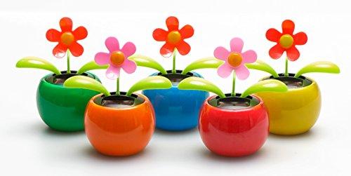 5er Set Solar Wackelblumen Solar Wackelblume Solarblume Wackelfigur Blume Farben Gemischt Grün, Orange, Pink, Blau, Rot Deko Fensterbank Dekoblume