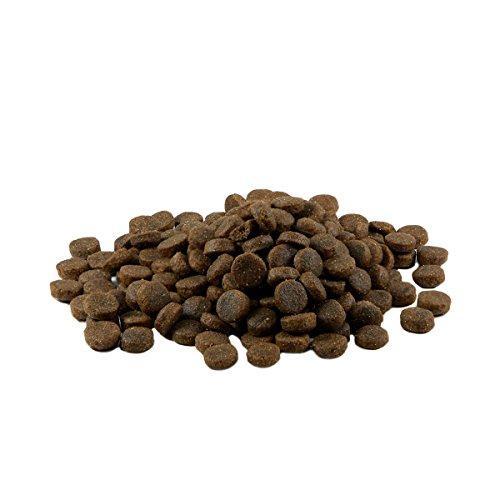 Mr. Crumble - Dried Pet Food Hundefutter Trockenfutter Getreidefrei mit Lamm 5 kg (24% Rohprotein, 14% Rohfett)