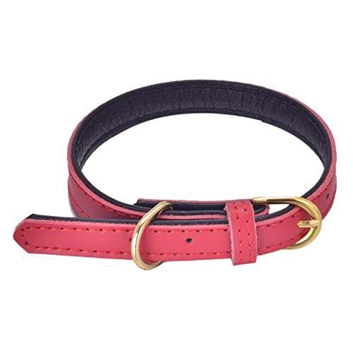 Yivise Halsband aus Leder, einfach und praktisch, langlebig -