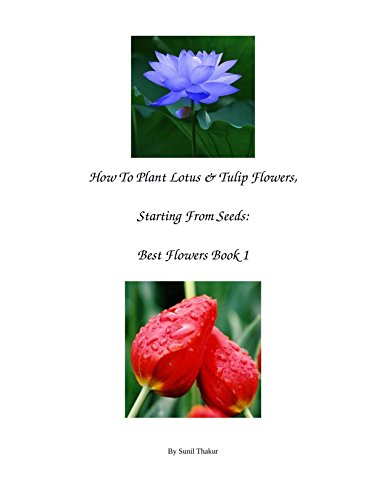 How To Plant Lotus & Tulip Flowers, Starting From Seeds: Best Flowers...