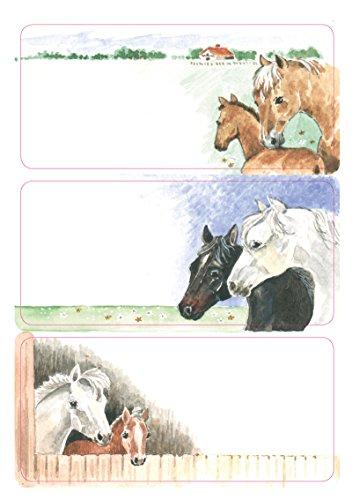 Herma 5893 Buchetiketten Schule, Motiv Pferde, Inhalt: 9 Schuletiketten für Schulhefte, Format 7,6 x 3,5 cm (Mädchen-namen-aufkleber)