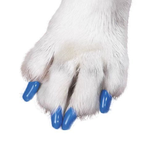 Service Manual-kit (Canine Soft Claws Dog and Cat Nail Caps Take Home Kit, Medium, Blue by PetEdge Dealer Services (English manual))