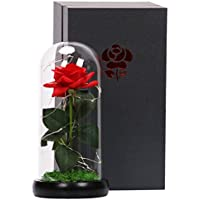 Langxun Silk Rose