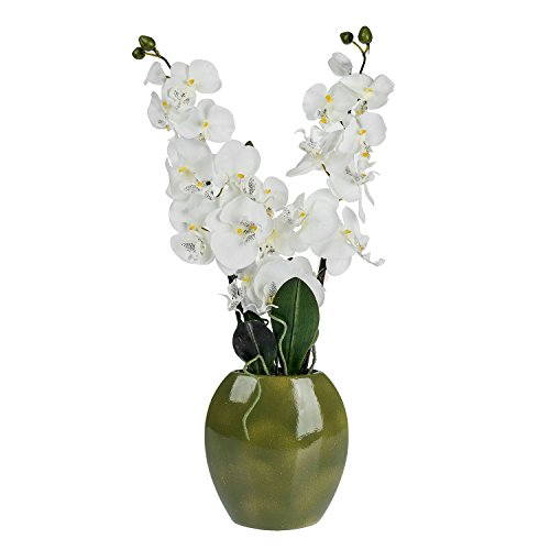homescapes-large-artificial-cream-orchid-in-green-oval-vase