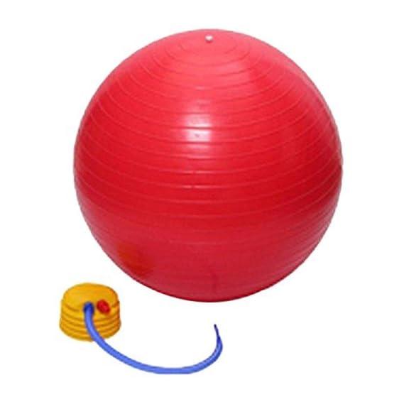 Moradiya fresh PVC Exercise/ Workout Anti Burst Gym Ball, 75cm (Red/ Blue/ Green)