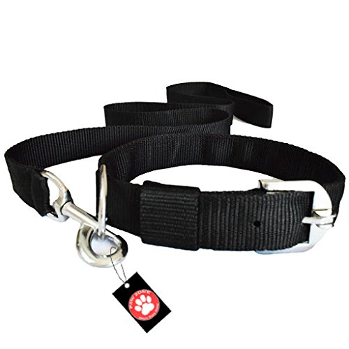 Pawzone Black Leash with Collar Set for Dogs -Large