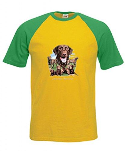 Erwachsene Schokolade Tee T-shirt (Einfach Tees Schokolade Labrador Retriever Collection Erwachsene Short Sleeve Baseball T-Shirt Gr. XX-Large, Canary/Green)