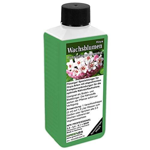 GREEN24 Hoya Dünger Wachsblumen düngen Flüssigdünger HIGHTECH