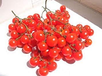 Homely Erbstück Deutsche Riesentraube Tomate?100 Samen?Riesige Cluster Cherry Red Tomatoes
