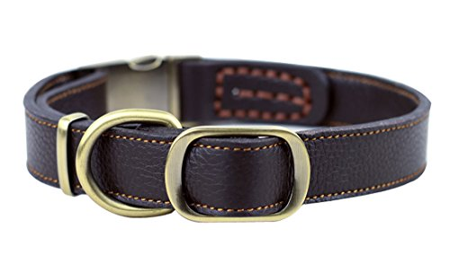 PENTAQ Einstellbare Hunde Lederhalsband, Hals 33 cm bis 51cm und 2,5 cm Breite, weich gepolsterte Ausbildung Kopf Kragen für mittlere/große Hunde (Braun) -