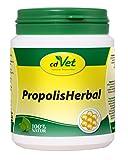 cdVet Naturprodukte PropolisHerbal 75 g