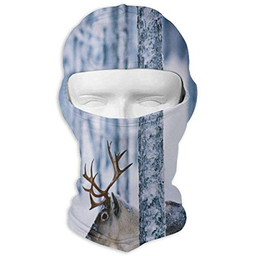 keiwiornb Balaclava Windproof Ski Mask-Balaclava Cute Floral Full Face Masks Ski Headcover Motorcycle Cycling Hiking