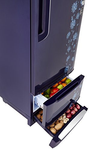 Godrej 225 L 4 Star Direct-Cool Single-Door Refrigerator (RD EDGE DUO 225 PD INV4.2, Erica Blue,Inverter Compressor,Base Stand with Drawer)