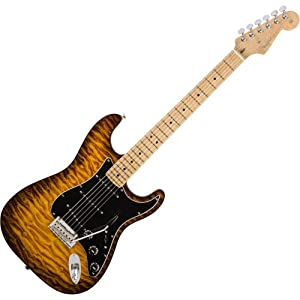 Fender American Pro Stratocaster Exotic Wood · Chitarra elettrica