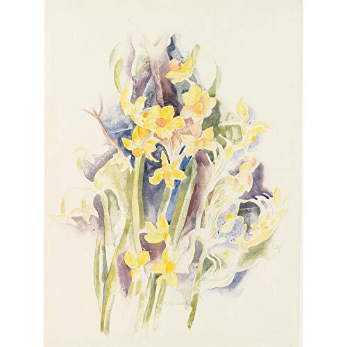 Demuth Small Daffodils Flower Drawing Painting Unframed Wall Art Print Poster Home Decor Premium Blume Zeichnung Malerei Wand Zuhause Deko - Daffodil Fine Art