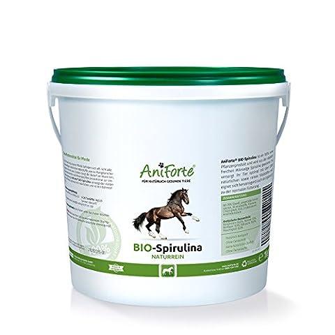 AniForte Poudre de spiruline Bio Naturelle 1kg Vital substances Complément crue Doublure de produit naturel pour chevaux