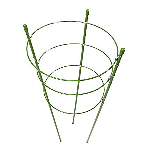 Lulalula anello di supporto per piante, confezione da 2giardino traliccio pomodori e piante a gabbia supporto in acciaio inox supporto per fiori rampicanti ortaggi frutta