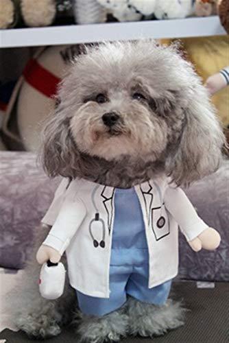 ERLIZHINIAN Funny Dog Kleidung Cool Pet Dog Kostüm Anzug Puppy Kleidung Mantel Kleidung für Hund Kostüm Outfit Krankenschwester Haustier Anzug Ropa Perro (Color : Handsome Doctor, Size : L) (Krankenschwestern Überprüfen Sie Krankenschwester Kostüme)