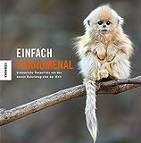 Einfach phänomenal: Einfach unglaubliche Tierporträts des World Wildlife Photographer of the Year-Preises für Naturfotografie