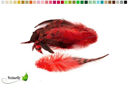10 Hahnenfedern Chinchilla 15-20cm (rot 250)//Vogelfedern Schmuckfedern Bastelfedern Maskenfedern Deko Federn Hahn