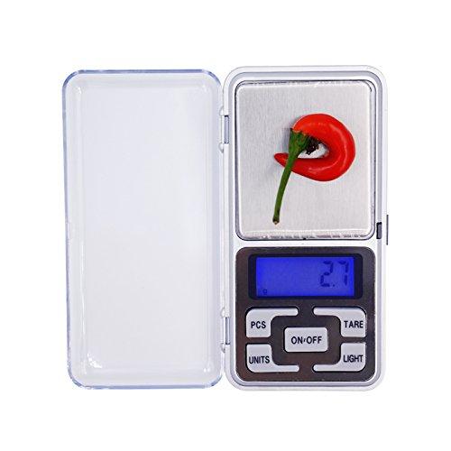 Dongjinrui Schmuck Maßstab 1 Kg 0,1G digitalen tragbaren Schmuck Essen reisen Gewicht 1000 G - Essen-gewicht-digital-skala