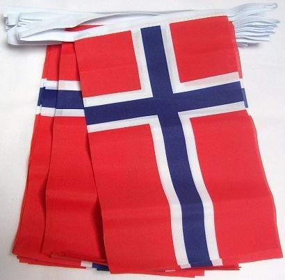 AZ FLAG FAHNENKETTE NORWEGEN 6 Meter mit 20 flaggen 21x14cm - NORWEGISCHE Girlande Flaggenkette 14 x 21 cm