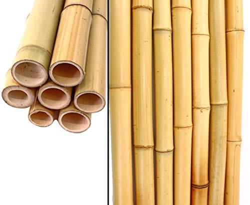 bambus-discount.com 12678 VX12678