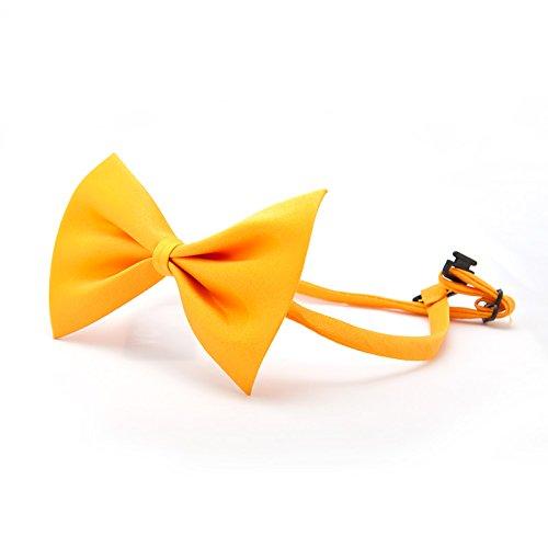 , Fliege für Hunde ORANGE (Orange Und Weiße Katze Kostüm)