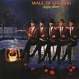 Songtexte von Wall of Voodoo - Happy Planet