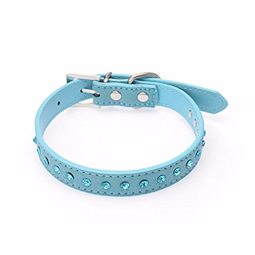 collier-chien-petit-pet-dog-pu-collier-en-cuir-puppy-blue-cat-strass-collier-m-2cm42cm-bleu