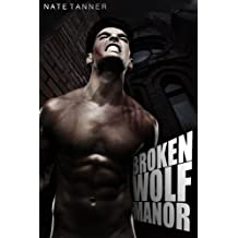 Broken Wolf Manor (English Edition)