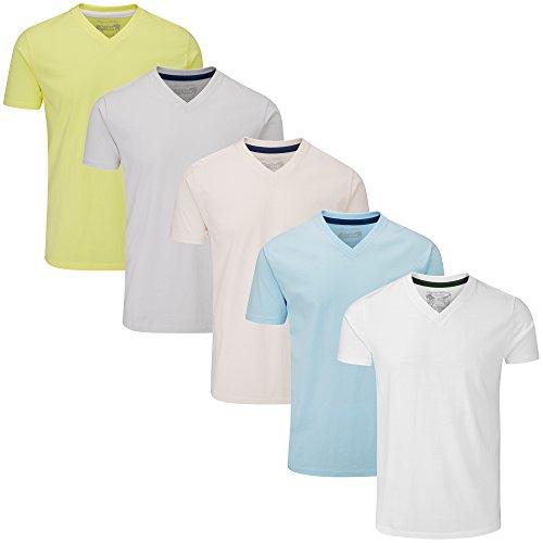 Charles Wilson 5er Packung Einfarbige T-Shirts mit V-Ausschnitt (Small, Light Essentials)