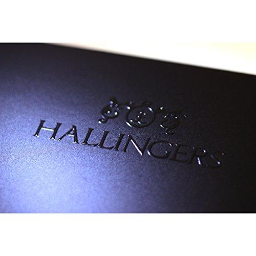41Lv4FMtiNL - Hallingers Gewürz-Set Grilllust - perfektes Geschenk für Männer - Edition 2018 | Set/Mix | 5x Miniglas in MiniDeluxe-Box | 95g
