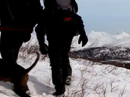Abenteuer Yukon, Durchs wilde Herz Kanadas (Kajak Unter 200)
