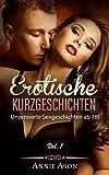 Erotische Kurzgeschichten Vol.1 Im Rausch der Lust: 45 unzensierte Sexgeschichten ab 18!