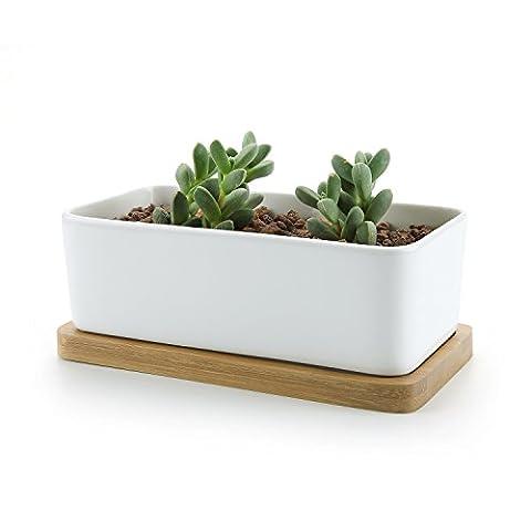 T4U Rectangulaire Céramique Pot Plante Récipient Pépinière Pots Succulents Cactus Plante pots Blanc