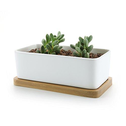t4u-rectangulo-blanco-ceramicos-planta-maceta-suculento-cactus-planta-maceta-planta-contenedor-viver
