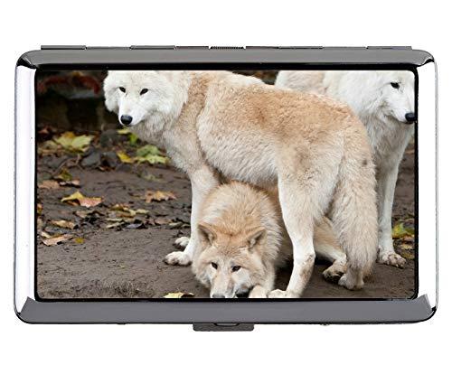 Kreative Aufbewahrungskoffer, Tier Wolf militärische Schutz Credit Visitenkarte Inhaber Fall